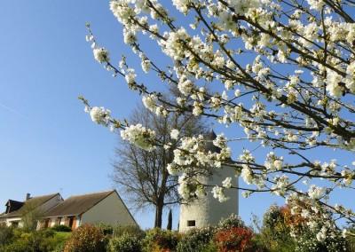 maison_dhotes_fleuri_printemps