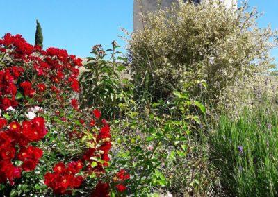 chambre d'hôtes la Tour et son parc fleuri